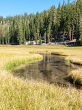 Meandering stream through mountain meadow Royalty Free Stock Photos