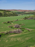 Meandering stream through wheat fields in spring. Stream meanders through a valley planted with wheat and surrounded by hills in The Palouse area of eastern Stock Image