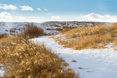 Meandrando o trajeto através da pastagem seca no inverno foto de stock royalty free