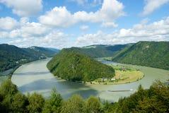 Meandro Schloegener Schlinge de Danúbio em Áustria Fotos de Stock Royalty Free