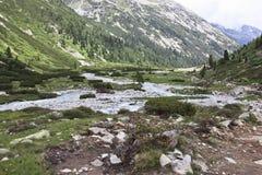 Meandrować Zamser Bach w Tyroler Ziller dolinie, Aust Zdjęcie Stock
