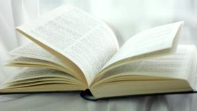 Meandruje w stronach, obraca strony święta biblia, wiatr podrzuca drukować strony książka, biblii strony podrzuca zbiory