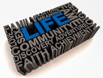 Meaning of life. Words related to meaning of life like family religion community faith sex money fame etc on white background, word life in blue and others in Stock Photos