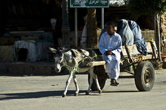 Means of transport in Siwa. A cart pulled by a donkey , carrying women with clothing typical of Siwa Stock Photo