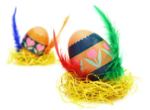 Measter egg. Easter egg race. Wings made of color feathers. Isolated on white Royalty Free Stock Images