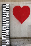 Measure love Stock Photography