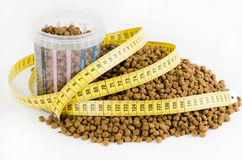 Measured dose of food for dog Stock Image