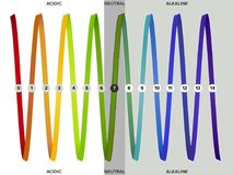 Measurement of the pH scale, spectrum, infographics royalty free illustration