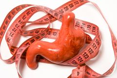 Measurement of stomach as definition of symptom or sign of disease e. g. enlarged stomach by overeating. Stomach model wrapped by. Measuring tape. Visualization stock images