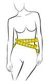 Measures in perfect female body Royalty Free Stock Image