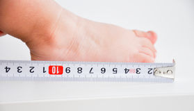 Measuring a baby feet Stock Image