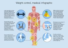 Measuring body mass, medical infographic. Muscular structure in men, Measuring body mass, Weight ontrol, Active lifestyle, proper nutrition. Medical vector illustration
