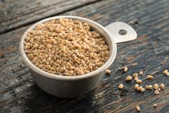 A measuring cup of steel cut oats Stock Photo