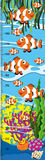 Measuring height scales on paper with clownfish in the sea Stock Photography