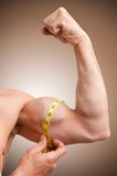 Measuring His Bicep Stock Image