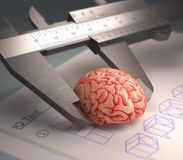 Measuring The Human Intelligence Stock Photos