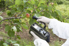 Measuring radiation levels of fruits Royalty Free Stock Photography