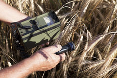 Measuring radiation levels of wheat. Measuring radioactivity levels of wheat Stock Photos