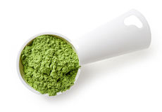 Measuring scoop of barley or wheat grass powder on white backgro Stock Image