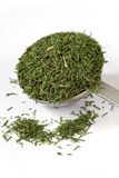 Measuring spoon of Dill Weed. A measuring spoon of dill weed spice stock photo