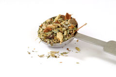 Measuring spoon of herbal tea Stock Photography