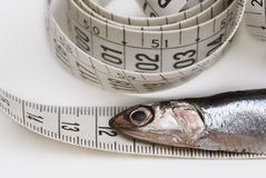 Measuring tape and fish. Royalty Free Stock Image