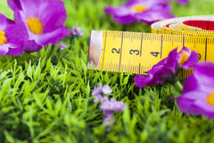 Measuring tape. On green grass Stock Photo