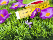 Measuring tape. In green grass Stock Image