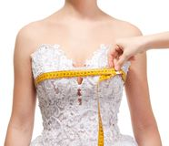 Free Measuring The The Grasp Of Breast Royalty Free Stock Image - 18114956