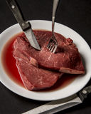 meat Fotografering för Bildbyråer