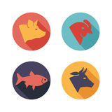 Meat animals icons. Flat style Royalty Free Stock Images
