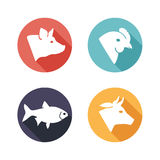 Meat animals icons. Flat style Royalty Free Stock Photo