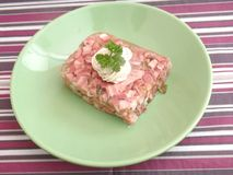 Meat in aspic Royalty Free Stock Photos