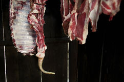 Meat background. Of fresh pork hanged for smoking Royalty Free Stock Photos