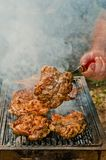 Meat baked on charcoal on a picnic in the forest Royalty Free Stock Photography