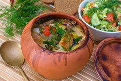 Meat baked with vegetables Stock Images