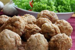 Free Meat Ball Stock Images - 3212684