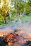 Meat on the barbecue Stock Photography