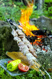 Meat for barbecue. On background of fire, as well as tomatoes and peppers Royalty Free Stock Images