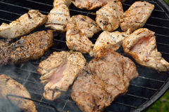 Meat on barbecue. Stock Images