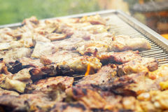 Meat on the barbecue Royalty Free Stock Images