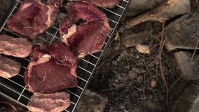 Meat on Barbecue stock video