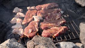 Meat on barbecue stock video footage