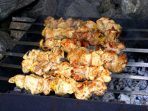 Meat barbeque. Barbeque meat with spices cooked over an open fire and coals Royalty Free Stock Image