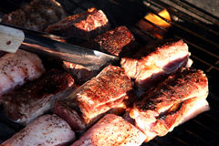 Meat on the BBQ. Tender loins on the barbecue Royalty Free Stock Image