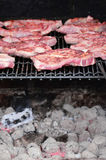 Meat on the BBQ Stock Photography