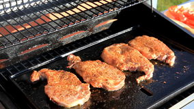 Meat  on the BBQ stock footage