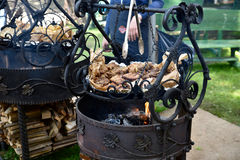 Meat being cooked on coals Stock Photography
