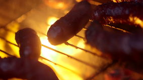 Meat being grilled on barbeque stock video