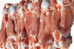 Meat with bone. Fresh raw sheep meat with bone Royalty Free Stock Images